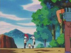 Wobbuffet, el Pokémon descarriado