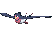 #277 Swellow
