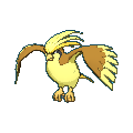 #018 Pidgeot Shiny