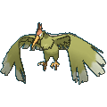 #022 Fearow Shiny