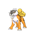 #243 Raikou Shiny