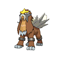 #244 Entei Shiny