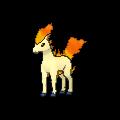 #077 Ponyta