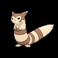 #162 Furret