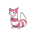 #162 Furret Shiny