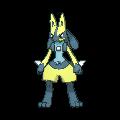 #448 Lucario Shiny